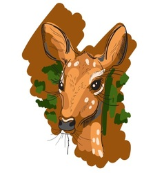 Hand drawn of deer in sketch style vector