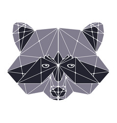 raccoon head polygonal vector image