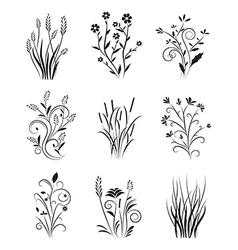 Vintage Floral Set vector image
