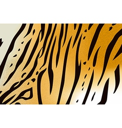 Tigerskin6 vector