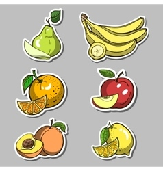 Stickers with fruits set vector