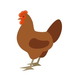 Cartoon chicken vector