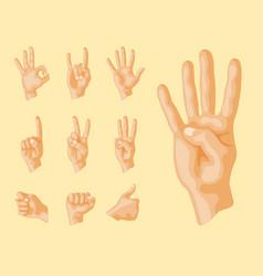 hands deaf-mute different gestures human arm vector image vector image