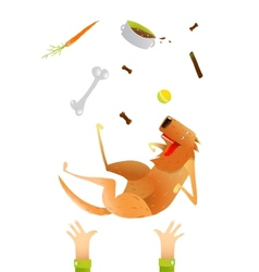 Feeding red happy dog throwing up on arms vector