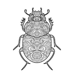 Scarab beetle coloring book for adults vector