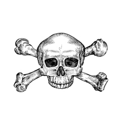 Jolly roger hand drawn human skull and crossbones vector