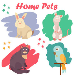 Bright images of domestic animals cat parrot rat vector