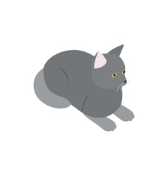 Grey cat icon isometric 3d style vector