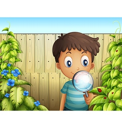 A boy holding a magnifying glass to see the bugs vector