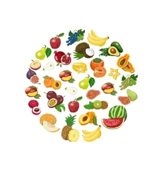 Isolated collection of fresh healthy fruits vector