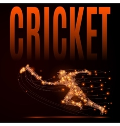 cricket player poly vector image