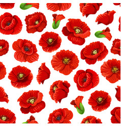 Flower of poppy floral seamless pattern background vector