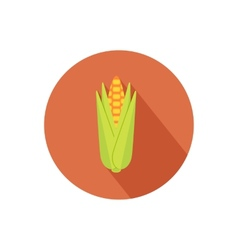 Corn icon vector