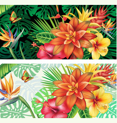 Cards from tropical plants and flowers vector