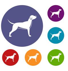 Dog icons set vector