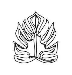 Isolated plant leaves vector