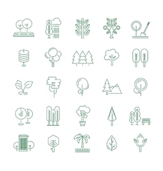 Trees set thin line icons on white vector