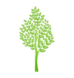 Green tree isolated on white for your design vector
