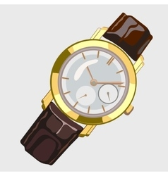 Classic mens watch with brown strap and gold dial vector