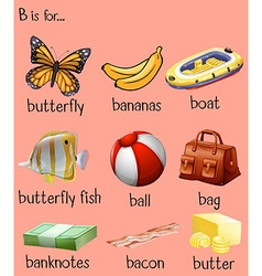 Different words for alphabet b vector