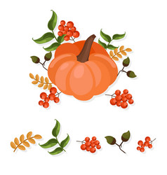 Pumpkin decor autumn harvest vector