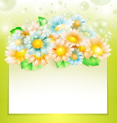 Spring flowers with paper banner vector image