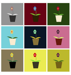 Assembly flat icons flower in a pot vector