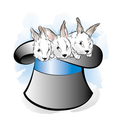 Hat of the magician with three rabbits vector