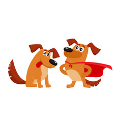 two dog characters in superhero cape admiring vector image