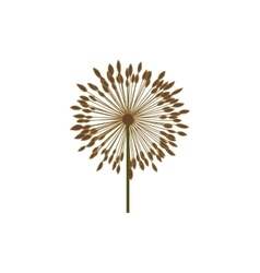 Colorful dandelion with stem and pistil vector