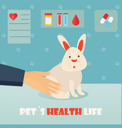 Veterinary medicine hospital doctor with cute vector