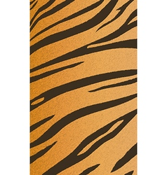 Tigerskin4 vector