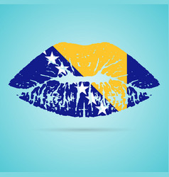 Bosnia and herzegovina flag lipstick on the lips vector