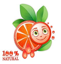 Slice of grapefruit with leafs and a smiley face vector image