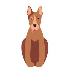 Cute pit bull dog cartoon flat icon vector