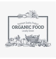 Background with hand drawn organic food vector