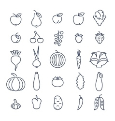 Farm fruits and vegetables flat line icons vector