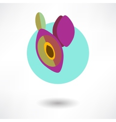 Icon plum with an arrow by organic food vector image