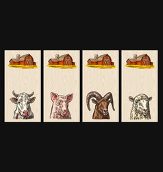 pig cow sheep and goat heads isolated on wood vector image