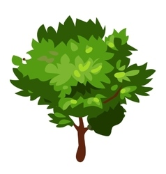 Green tree in cartoon style on white background vector
