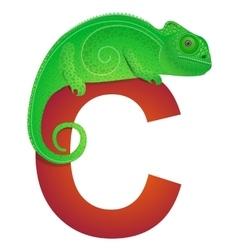 C for chameleon vector