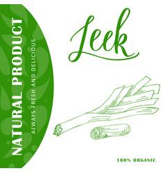 vegetable food banner leek sketch organic food vector image vector image