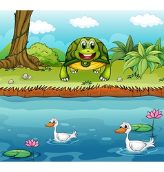 A turtle beside the river with ducks vector image