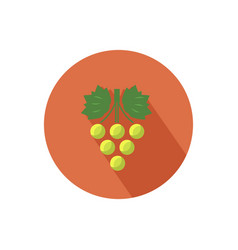 Grapes icon vector