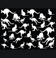 kangaroo collections vector image vector image