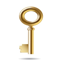 Three dimensional little golden key vector
