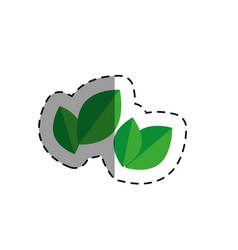 Leafs plants natural icon vector