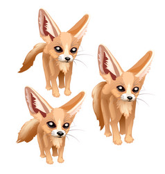 Three standing sandy foxes of different sizes vector