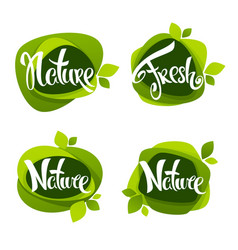 nature lettering collection of leaf labels vector image vector image