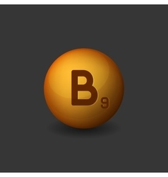 Vitamin B9 Orange Glossy Sphere Icon on Dark vector image vector image